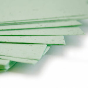Plant this 11 x 17 Pastel Green Plantable Seed Paper to grow a bouquet of wildflowers.