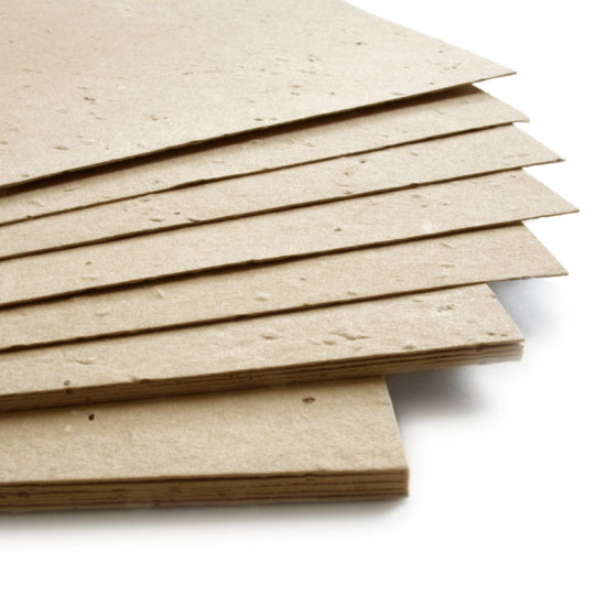 Plant this 11 x 17 Latte Brown Plantable Seed Paper to grow beautiful wildflowers.