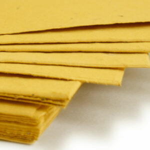This 11 x 17 Mustard Yellow Plantable Seed Paper can be planted to grow a bouquet of wildflowers.