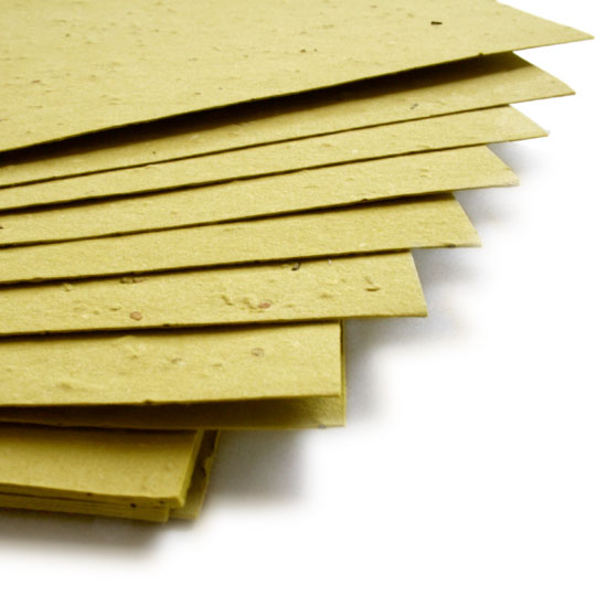 Grow wildflowers with this 11 x 17 Olive Green Plantable Seed Paper.