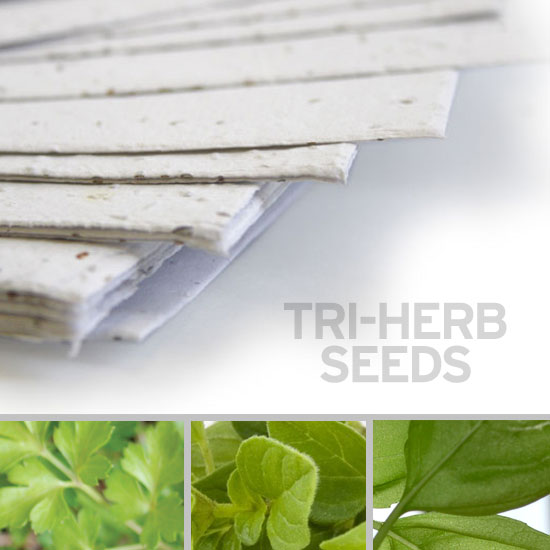 Grow a trio of herbs when you plant this 11 x 17 White Edible Tri-Herb Plantable Seed Paper.