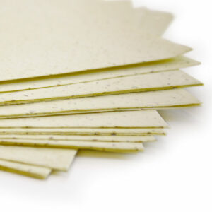 Plant this 11 x 17 Pastel Yellow Plantable Seed Paper to grow a bouquet of wildflowers.