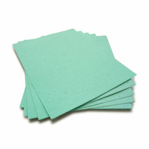 Grow a bouquet of wildflowers when you plant this 8.5 x 11 Aqua Plantable Seed Paper!