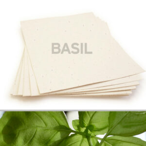 Plant this 8.5 x 11 Cream Basil Plantable Seed Paper to grow a garden of savory basil.