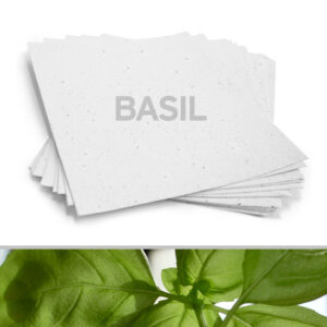 This 8.5 x 11 White Basil Plantable Seed Paper grows savoury basil when planted.