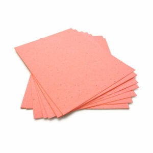 This eco-friendly 8.5 x 11 Coral Plantable Seed Paper is embedded with wildflower seeds.