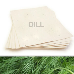 Grow a delicious garden of dill when you plant this 8.5 x 11 Cream Dill Plantable Seed Paper.