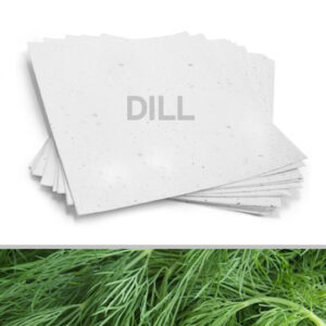 Grow a garden of delicious dill with this 8.5 x 11 White Dill Plantable Seed Paper.