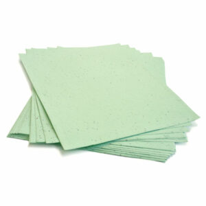 This 8.5 x 11 Pastel Green Plantable Seed Paper is eco-friendly!