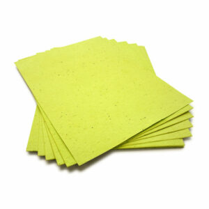 This 8.5 x 11 Lime Green Plantable Seed Paper is eco-friendly!