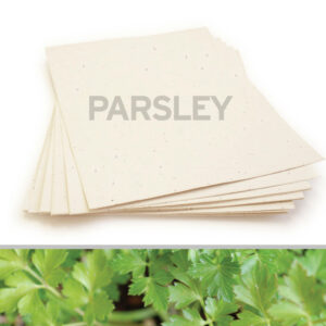 Grow delicious parsley with this 8.5 x 11 Cream Parsley Plantable Seed Paper.