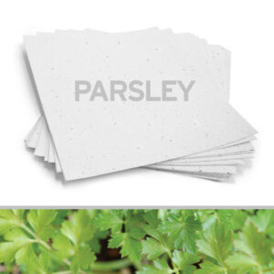 Grow a garden of parsley with this 8.5 x 11 White Parsley Plantable Seed Paper.