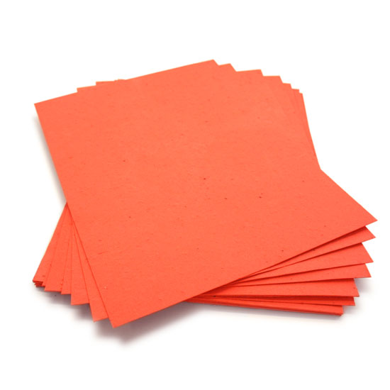 When this 8.5 x 11 Tangerine Plantable Seed Paper is planted, it grows a bouquet of wildflowers.