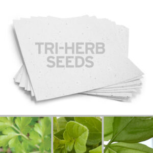 Plant this 8.5 x 11 White Edible Tri-Herb Plantable Seed Paper to grow edible herbs!