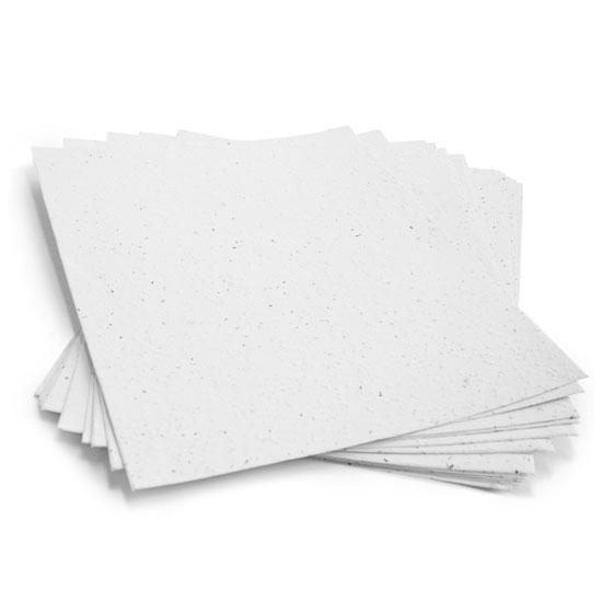 This 8 1/2 x 11 Plantable Paper can be planted to grow wildflowers.