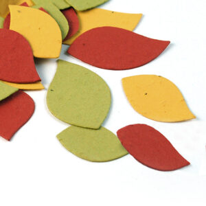 When the party is over, you can plant this autumn leaf biodegradable confetti to grow wildflowers.