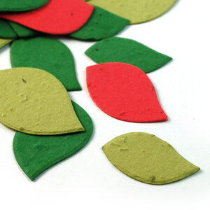 This eco-friendly biodegradable confett is a colourful and festive confetti that composts into flowers!