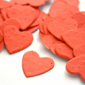 Heart shaped biodegradable confetti in tangerine is eco-friendly, fun and so memorable!