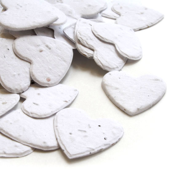 Guests can take this biodegradable confetti in White home to plant and grow wildflowers.
