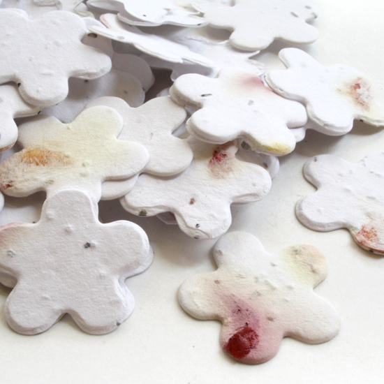 This biodegradable confetti is eco-friendly, fun and so memorable!