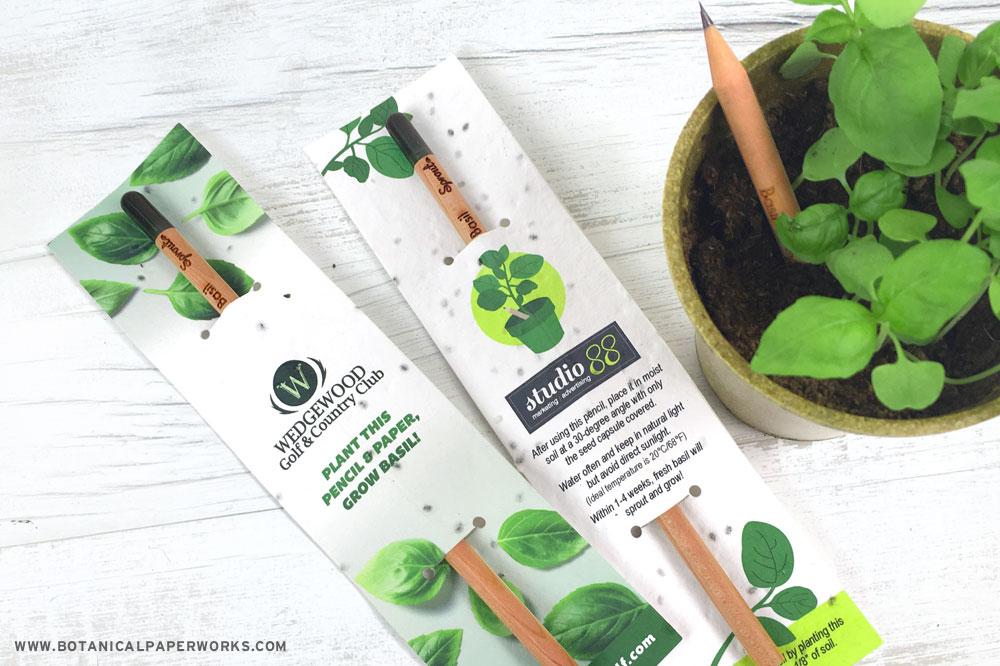 plantable sprout pencils
