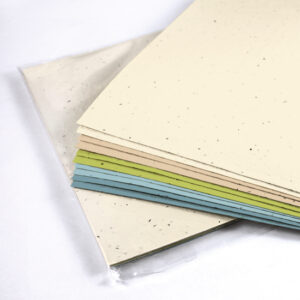Pick your favorite color theme for your next project with these Colored Seed Paper Sets.