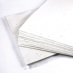 These Seed Paper Packages are the perfect gift for the crafting or scrapbooking lover!