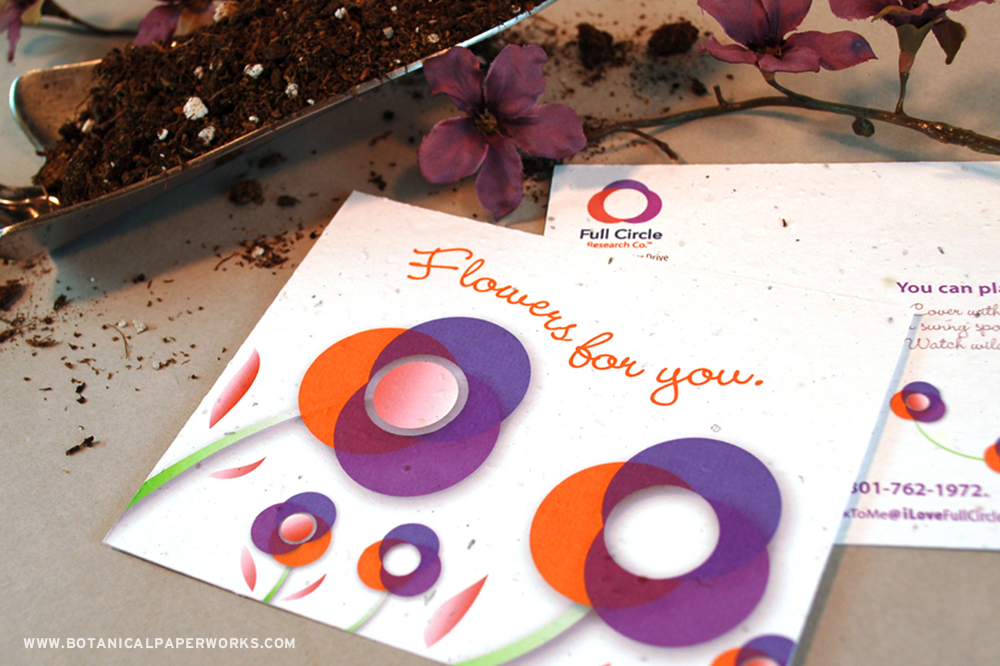 Seed paper panel card promotional product for Full Circle Research Co.