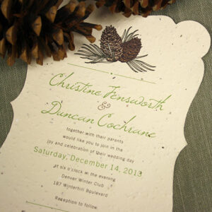 These Pinecone Plantable Wedding Invitations are perfect for rustic, eco-friendly autumn and winter weddings.