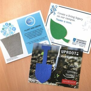 Small Eco Panel Card With Shape
