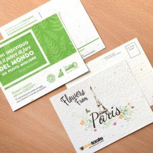 Plantable Postcard