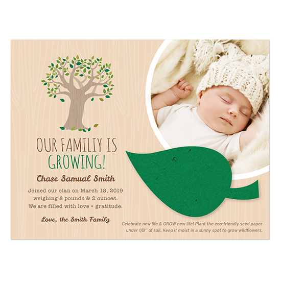 With a little seed paper leaf attached to plant and grow flowers, your friends and family will absolutely love this Tree Plantable Leaf Photo Birth Announcements.