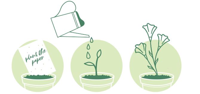 planting seed paper graphic