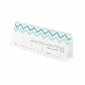Plantable chevron place cards