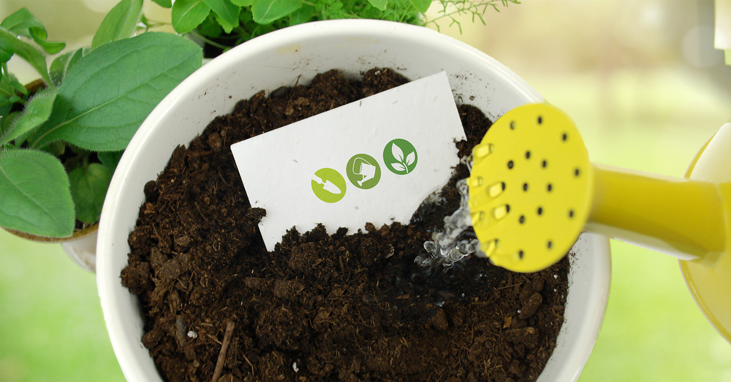 Pot of soil with Botanical PaperWorks seed paper being planted in it.