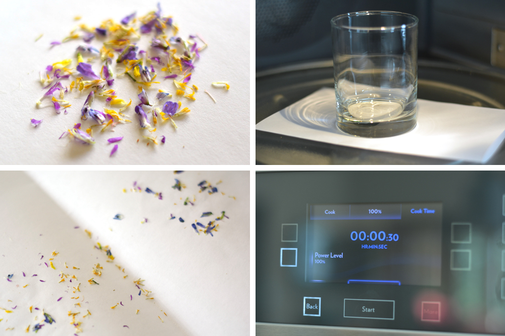 drying wildflowers in the microwave