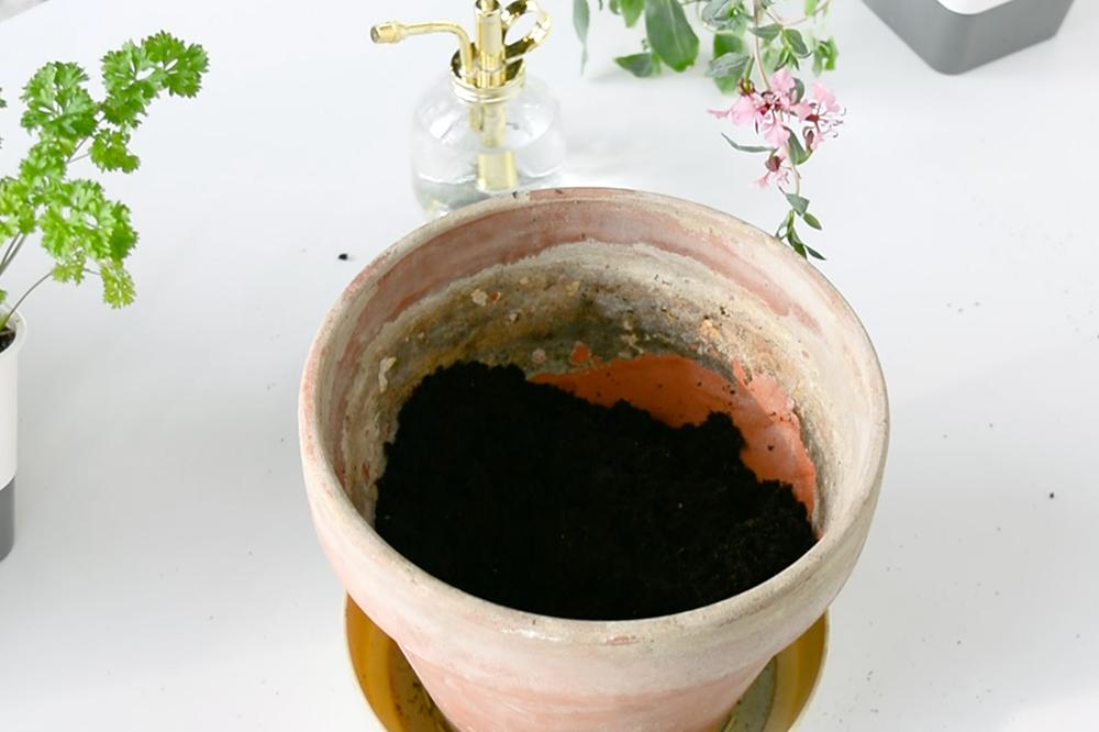 all-purpose potting soil in a pot