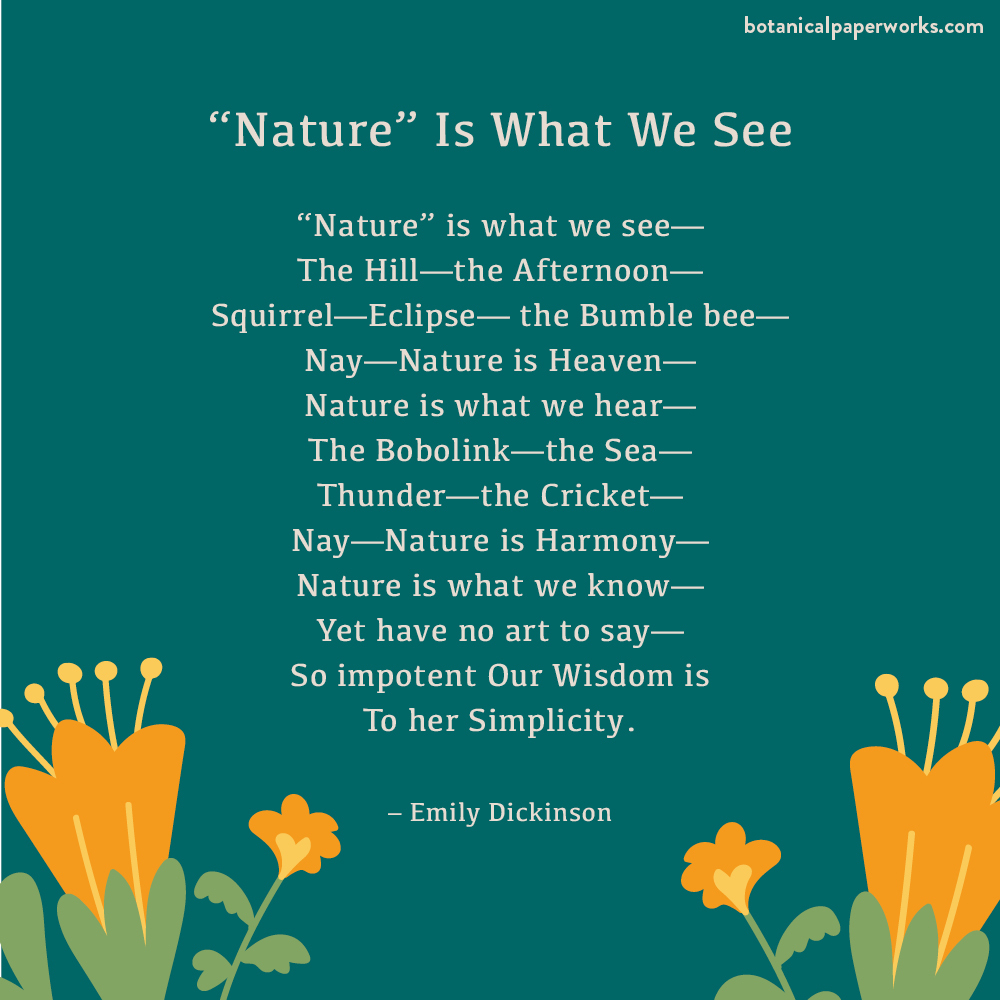 """an environmental poem called """"Nature"""" Is What I See by Emily Dickinson"""