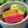 Social cues wristbands made with seed paper sitting in a pot of soil.