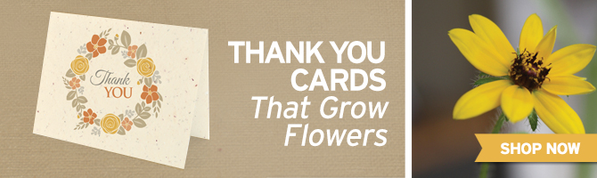 Browse through seed paper thank you cards by BotanicalPaperWorks.com. Great for weddings, showers & more.