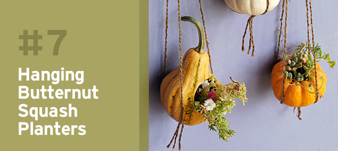 Turn mini pumpkins and squash into adorable hanging planters.