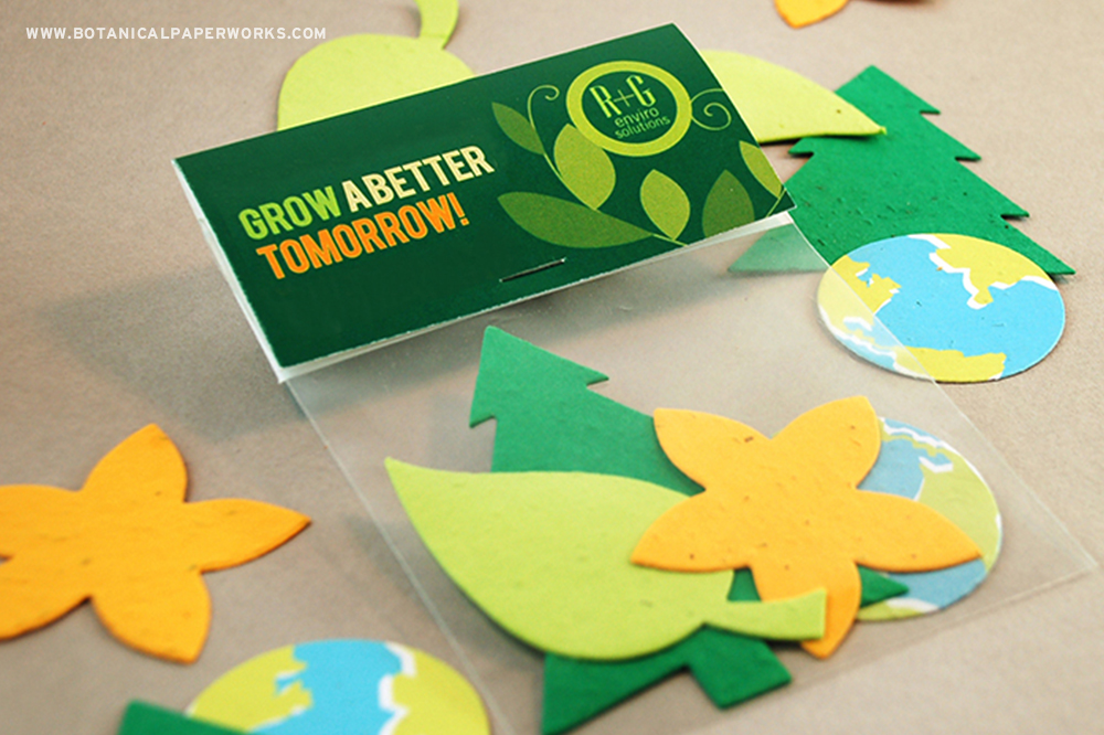 Students will love planting the four seed paper shapes inside these Nature Shape Packs.