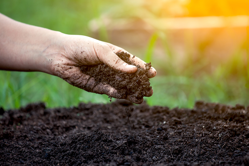 Compost is ready when it looks and feels like soil.