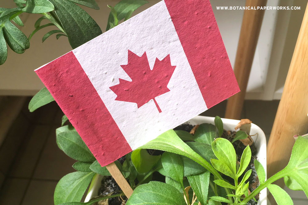 When it's time to celebrate Canada's birthday this July, spread your message and branding with these eco-friendly promotional flags that grow wildflowers.