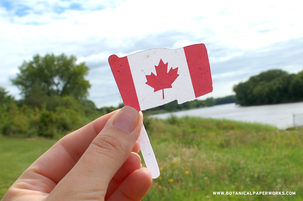 Share a seed-infuded plantable Canadian Flag shape to show your Canadian pride and spread wildflowers.