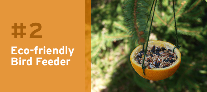 These eco-friendly bird feeders are the perfect way to attract wildlife to your yard.