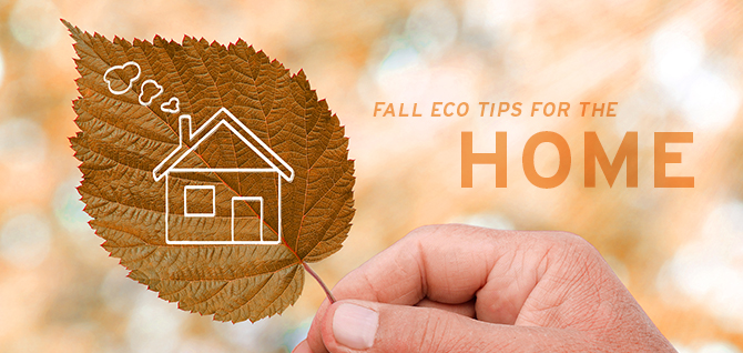 Prepare for the season ahead with these fall eco tips for the home!