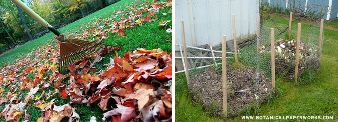 Getting your garden ready for Fall is easy with these simple tips from Botanical PaperWorks.