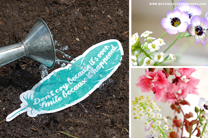 FREE printables like these bookmarks are even better on seed paper so you can plant them after and leave no waste behind, just wildflowers!