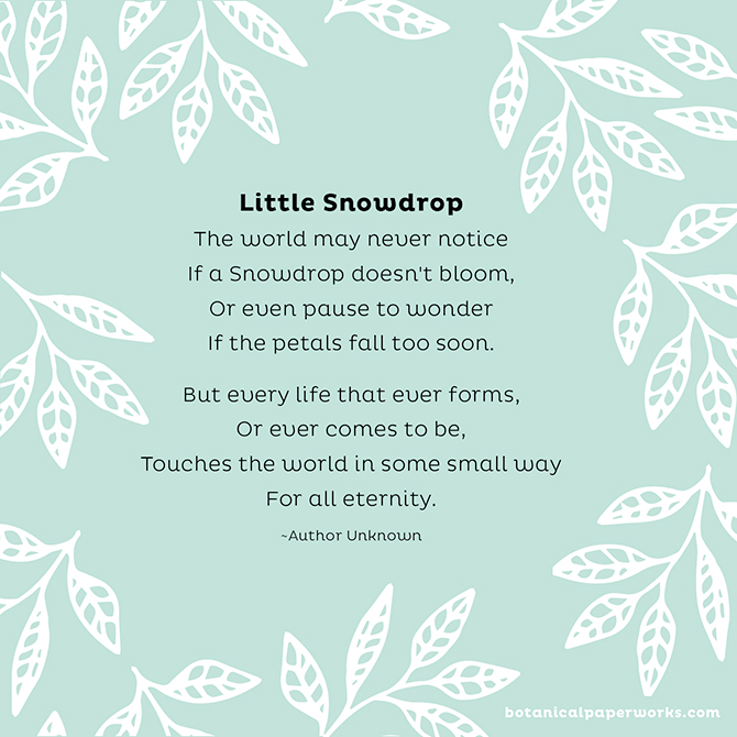 Funeral Poems to Share in Memory: Little Snowdrop